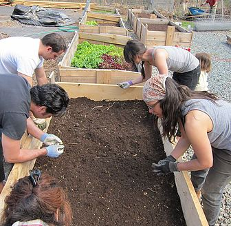 Permaculture Training New York   Andrew Faust   Center For BioRegional Living   917-584-4588 Advanced permaculture design, education and consultation in the tri-state area Manhattan, Brooklyn, Queens, Bronx, Staten Island, North New Jersey