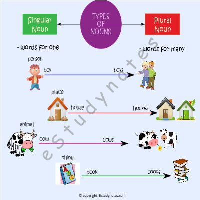 Singular and Plural Nouns Singular Noun – Words used for one person, place, animal or thing are called as singular nouns. Plural Noun – Words used for more than one person, places, animals or things are called plural nouns. Most nouns can be made plural by adding –s in the end. E.g. girl – girls,…
