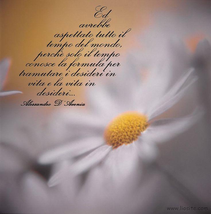 """Ci sono frasi che ti aprono la mente, almeno a me accade.... Piccole cose scontate che però la mia natura rifiuterebbe. Poi vedi una frase e capisci che devi accettare anche le cose che non ti apparterebbero :( """"E avrebbe aspettato tutto il tempo del mondo, perchè solo il tempo conosce la formula per tramutare i desideri in vita e la vita in desideri…"""" Alessandro D'Avenia - Cose che nessuno sa #alessandrodavenia, #tempo, #desiderio, #vita, #accettare, #attendere, #pazienza, #graphtag, #i"""