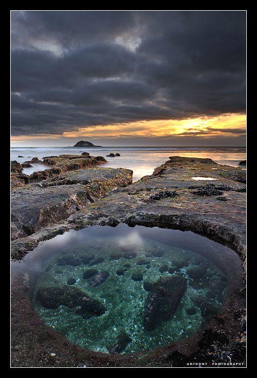 Maori Bay, Auckland, New Zealand