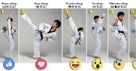 Discover ALL 27 Taekwondo Kicks with this KUKKIWON Video Tutorial.