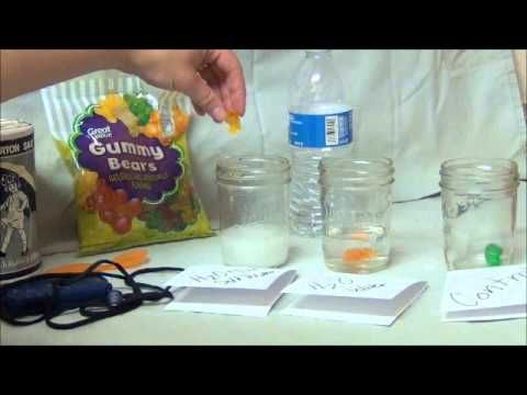 demonstrating osmosis with egg Demonstrating osmosis in both directions, diffusion of water into the egg and then out of the egg, will require an additional 24 hours, for a total of four days sciencing video vault material requirements.