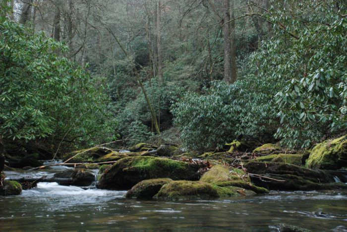 12 Unique Hidden Spots In Georgia Where Camping Is A Must