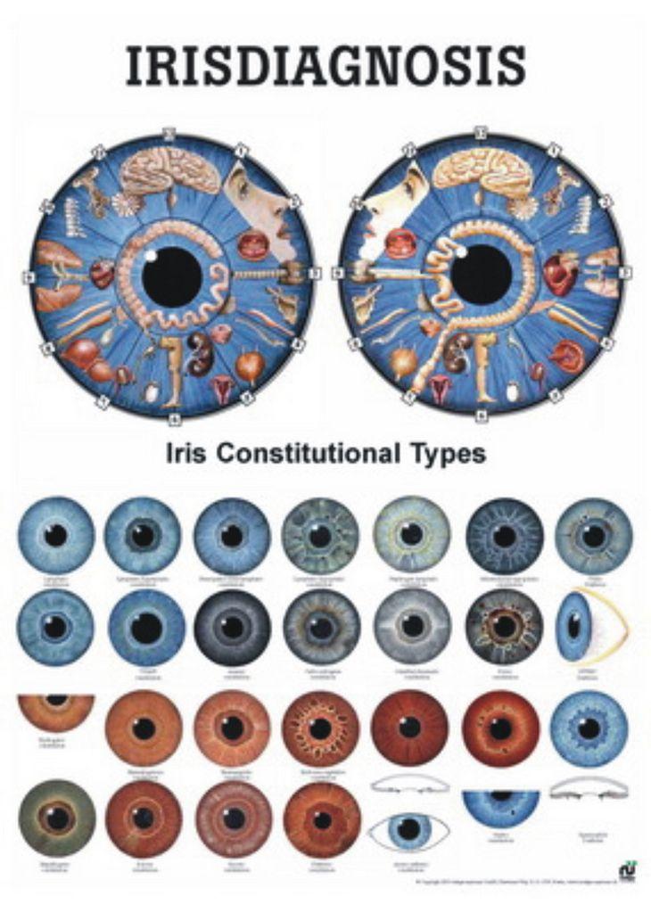 Blog de cursoiridologia : IRIDOLOGIA - CURSO DE IRIDOLOGIA A DISTÂNCIA, IRIDOLOGIA E IRISDIAGNOSE- O ESTUDO DA ÍRIS
