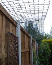 40 Best Cat Fence Images On Pinterest Cats Backyard And