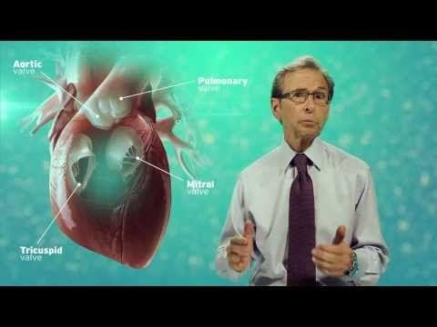 Atlanta Heart Doctor explains the Mitral Valve - YouTube