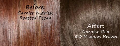 Hair Color Shades Roasted Pecans And Color Shades On
