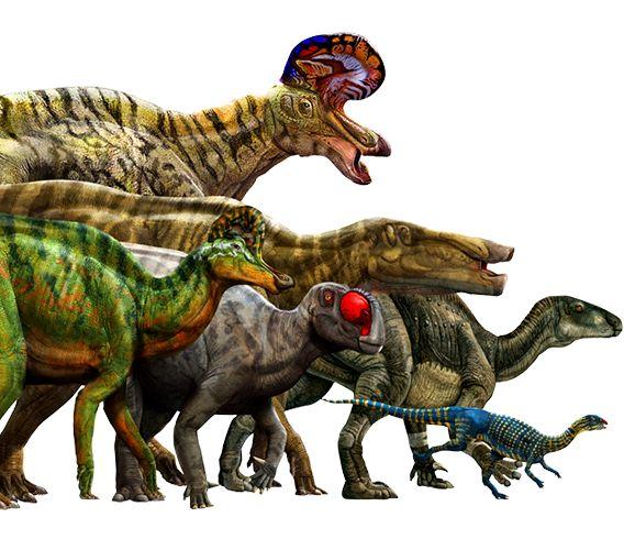 Androsauros