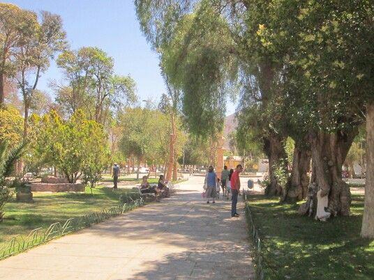 Plaza de Vicuña donde nació la poetiza Gabriel Mistral.
