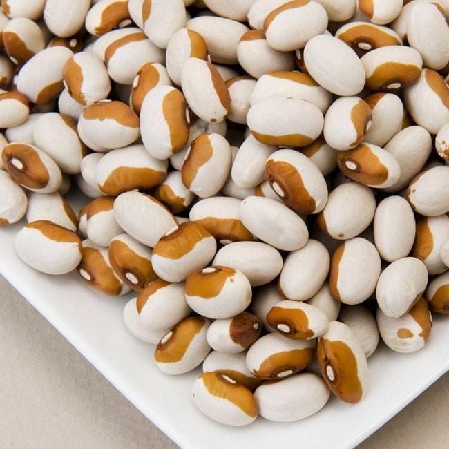 Calypso Bush Dry Bean Yin Yang Heirloom Garden Seeds Non-GMO