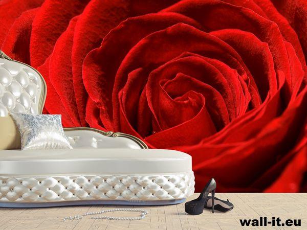Fototapeta róża.  http://www.wall-it.eu/product/photowallpapers/natura/czerwona%20roza%20fototapeta.jpg  #fototapeta #fototapety #mural #murals #bedroom #room #sypialnia #aranzacja #rose #roza #red #czerwona