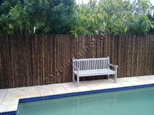 17 best images about pool on pinterest pool chairs for Pool fence screening ideas