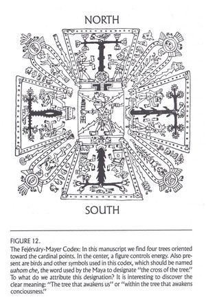 The Sacred Cross From Codice Fejérváry-Mayer, but Mayan scholars believe it should be called uahomche, the name used by the Maya to denote the Cross of the Tree.