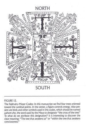 The Sacred Cross From Codice Fejérváry-Mayer, but Mayan scholars ...