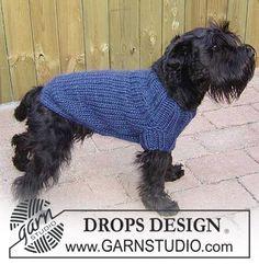 """Suéter DROPS para perro en """"Eskimo"""". Patrón gratuito de DROPS Design."""
