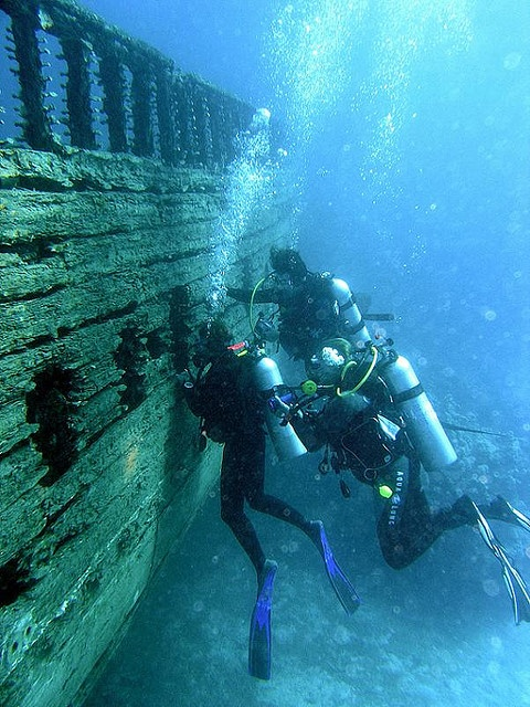 151 Best Images About Underwater Finds On Pinterest