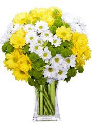 SANTIN - rozvoz květin