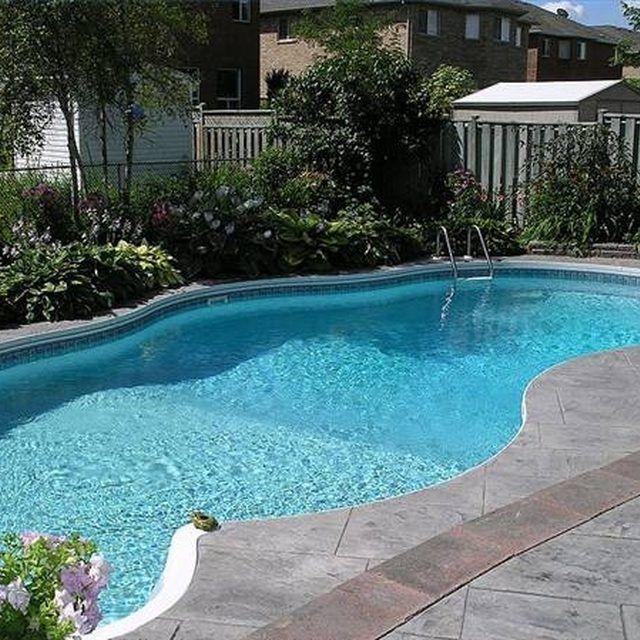 Around The Pool Fair Best 25 Pool Landscaping Plants Ideas On Pinterest  Pool Plants