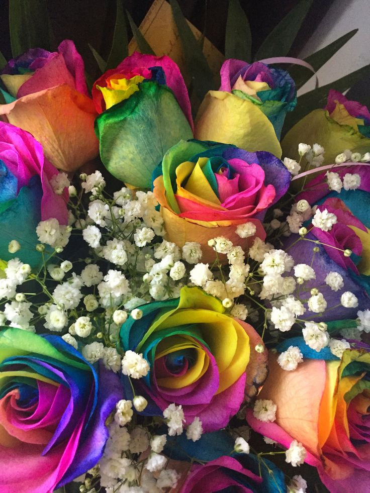 #flowers #roses #colours #colorful