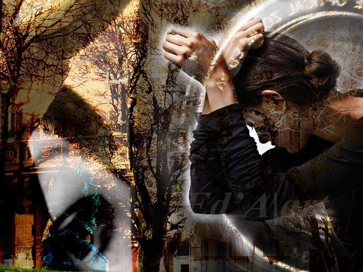 (C)Ed'A|art