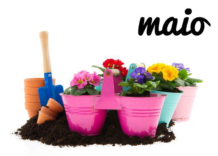 Como já vem sendo habitual, aqui deixamos mais um conjunto de excelentes dicas para o seu jardim, para o mês de maio!  Confira hoje mesmo tudo o que pode e deve fazer no seu jardim durante o quinto mês do ano!  #oleomac #oleomacportugal #maio #primavera #dicas #jardim #jardinagem #jardinar #temperaturas #flores #colheitas #canteiros #estilodevida #cuidados #dedicação #amor #paixão