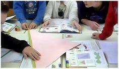 Vandaag werkte groep 7 in de rekenles aan het berekenen van de oppervlakte van regelmatige figuren, te beginnen met driehoeken. Ik wilde dat de kinderen zelf zouden ontdekken dat je er een rechthoek van moet maken, zodat je de formule lengte keer breedte kunt gebruiken.