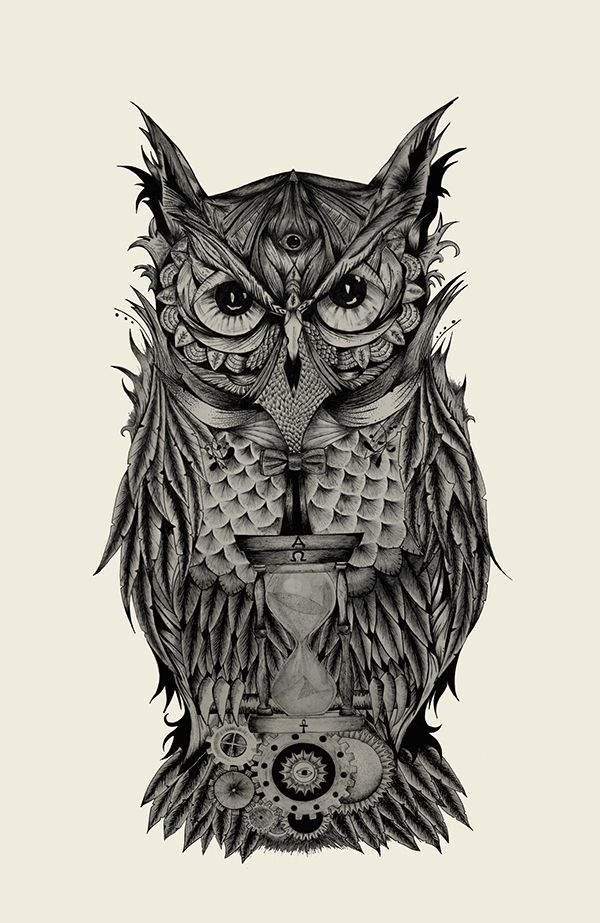 Stefano D'Andrea - illustration - The Owl's time