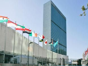 UNITED NATIONS: An India-born academician has been named by the UN Human Rights Council as an adviser to one of its working group on the issue of human rights and transnational corporations and other business enterprises.