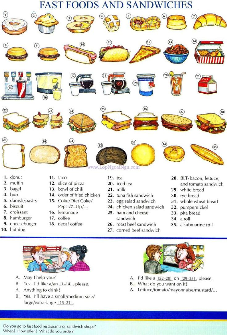 50 - FAST FOODS AND SANDWICHES - Picture Dictionary - English Study, explanations, free exercises, speaking, listening, grammar lessons, reading, writing, vocabulary, dictionary and teaching materials