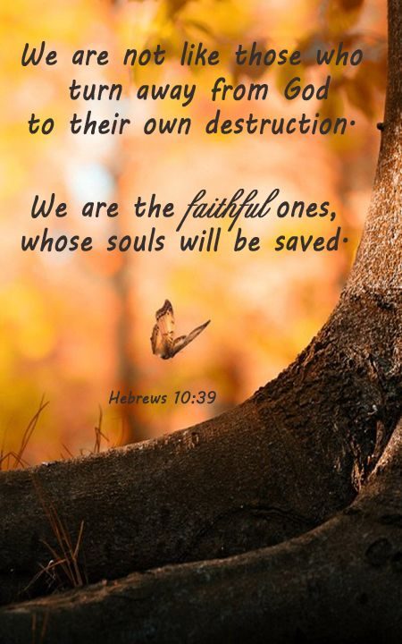 """""""But we are not of them who draw back unto perdition; but of them that believe to the saving of the soul."""" Hebrews 10:39"""