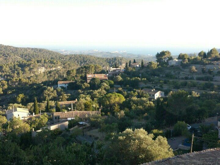 Galilea mallorca