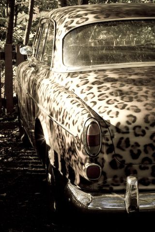 Leopard Print Car. I think I need a new paint job...