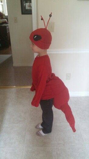 Red ant costume - we actually changed to red pants for his play