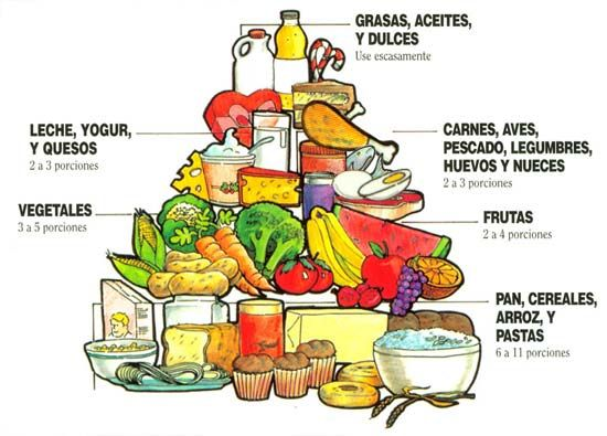 Como elaborar una dieta equilibrada