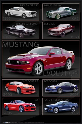 Ford Shelby - Mustang Evolution