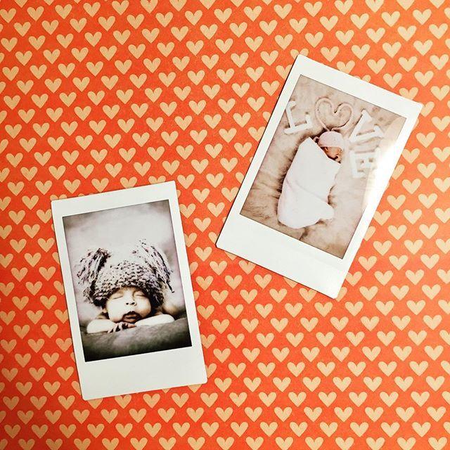 Pinterestu0027teki 25u0027den fazla en iyi Fotos drucken lassen fikri - alu dibond küchenrückwand erfahrung