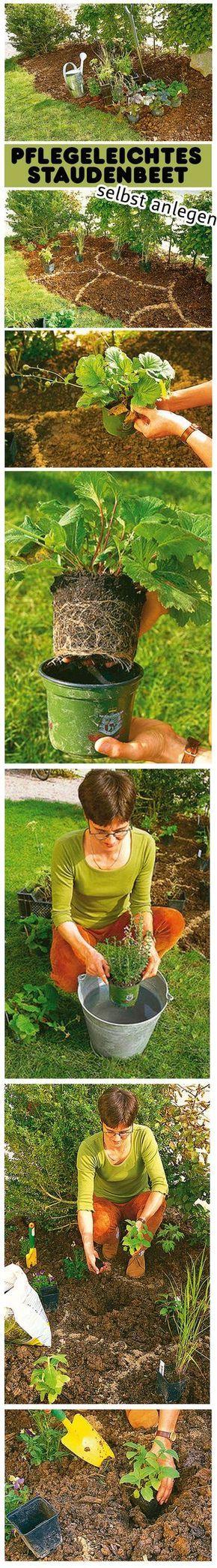 Die besten 25+ Blumengarten Ideen auf Pinterest Blumen anbauen - gemusegarten anlegen fur anfanger