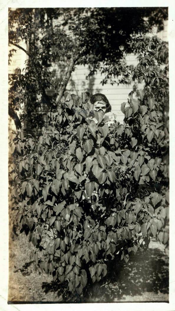 vintage photo - lady in a bush