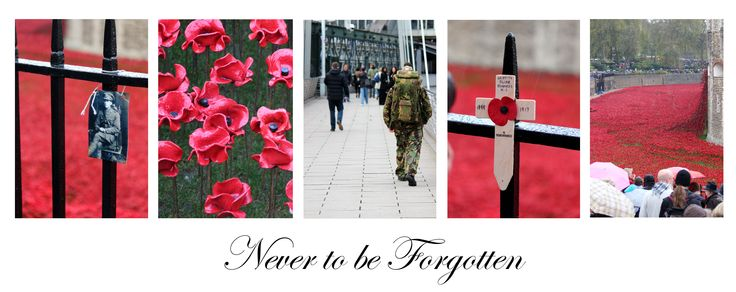17 Year old studying Graphic Design, Photography and 3D Creative Design at Oldham Sixth Form College, Manchester, England Email - xstottyx@hotmail.com #London #Poppy #Day #Display #Never #to #be #Forgotten #Photography #Sequencing #World #War #2014 #Soldier #The #Royal #Brittish #Legion #Remembrance #Ceramic #Poppies #Anzac