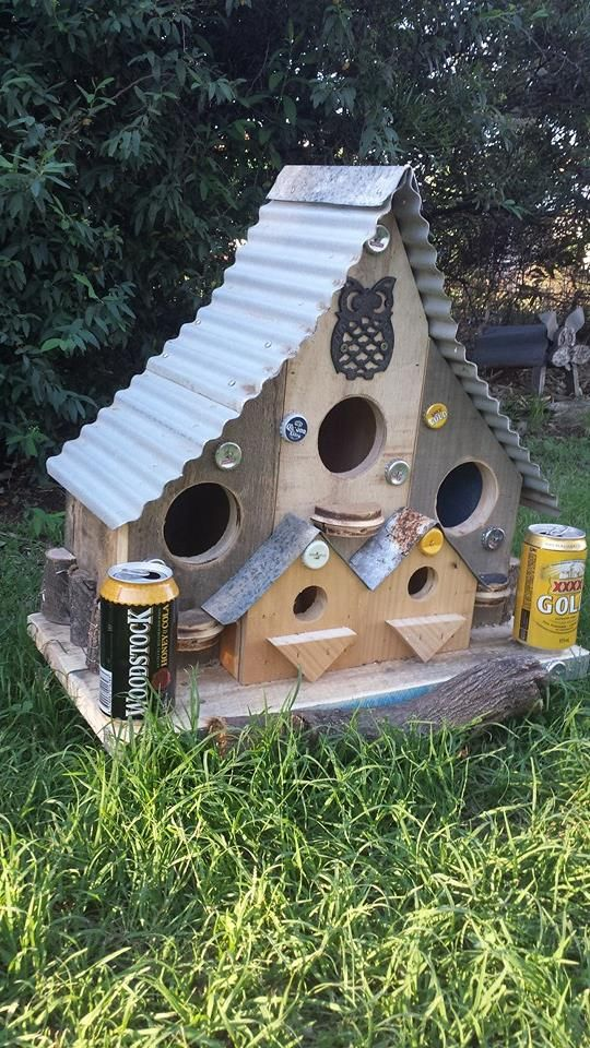 For the birds who like to chill with a beer. By Mel Rosser