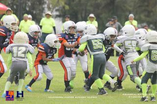 Halcones clasifica a play off invicto en Tiny Tot ~ Ags Sports