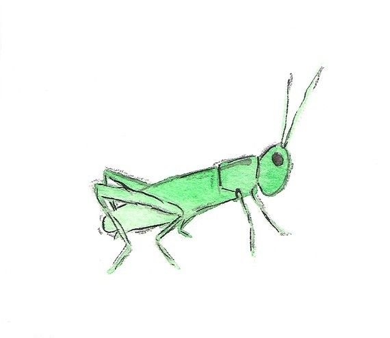 Grasshopper - archival print of watercolor painting. $10.00, via Etsy.