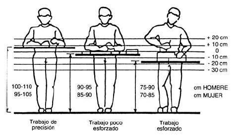 Diseño del puesto de trabajo | Fisioterapia