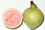 GUAVA  -    Guavas are low in calories and fats but contain several vital vitamins, minerals, and antioxidant poly-phenolic and flavonoid compounds that play a pivotal role in prevention of cancers, anti-aging, immune-booster, etc.