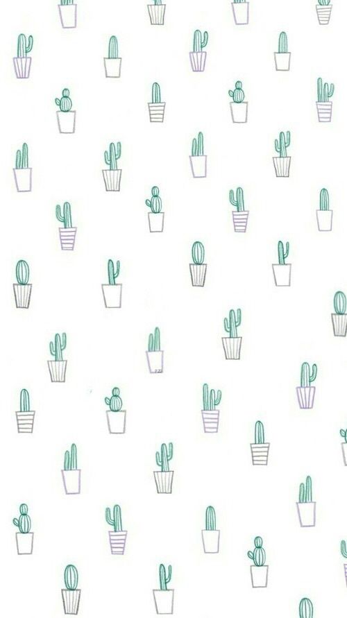 Imagen de cactus, background, and wallpaper