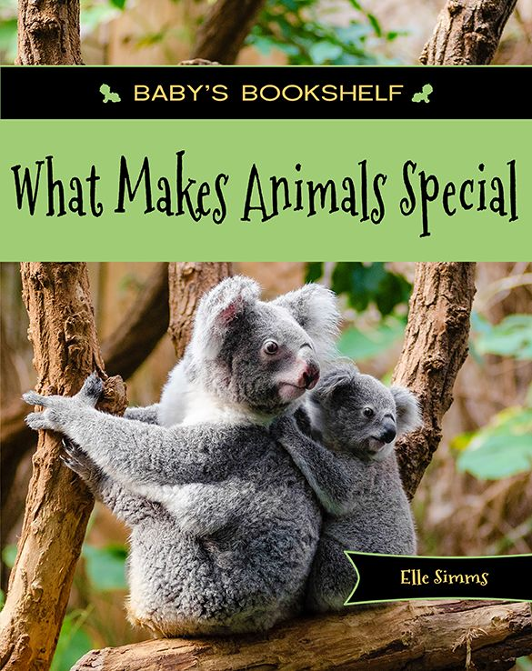 Full color and beautifully photgraphed, this book about what makes animals unique and special is sure to delight children ages 0 - 3. What Makes Animals Special identifies a wide range of animals from all over the world and the main identifying feature we associate with those animals.  KINDLE e-book available.  GET YOUR COPY NOW!  Click the picture!