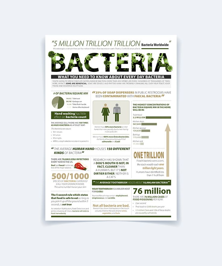 Bacteria - Infographic on Behance
