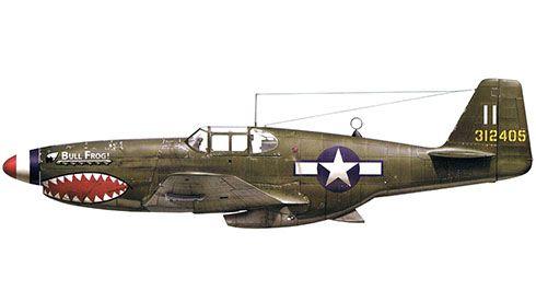 North American P-51 Mustang B-1-NA ''Bull Frog'', 23º Grupo de Caza, Fuerza Aérea de Estados Unidos, 1944. Pin by Paolo Marzioli