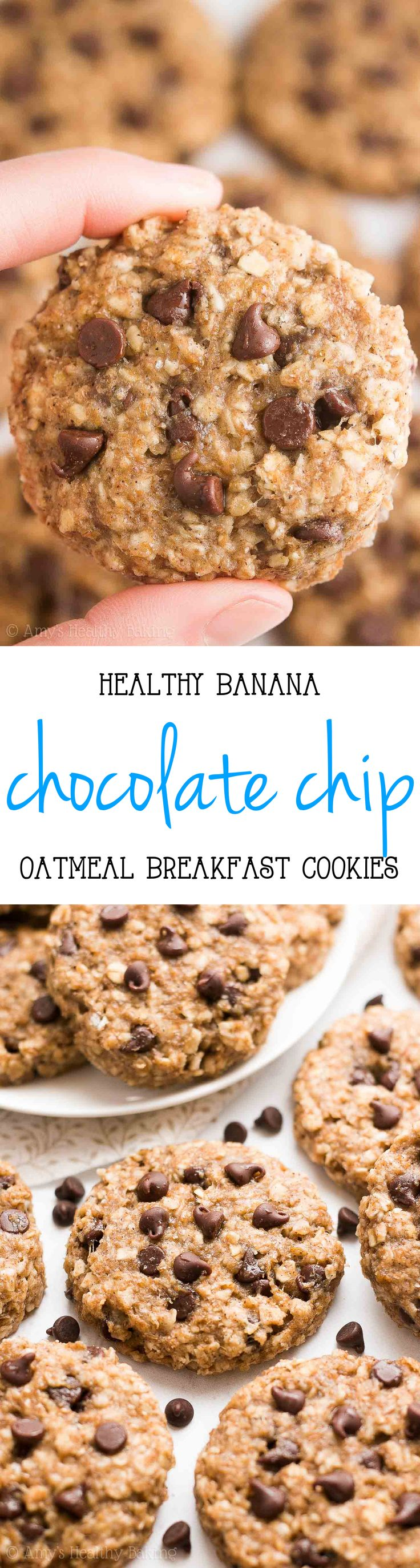 {HEALTHY!} Chocolate Chip Banana Oatmeal Breakfast Cookies -- absolutely AMAZING! Only 78 calories & so easy to make!