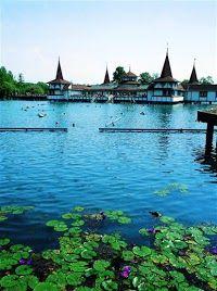 The thermal lake at Héviz, Hungary: